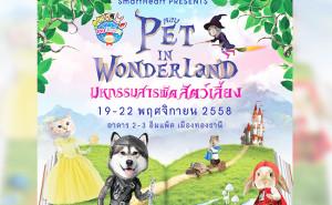 Pet in Wonderland