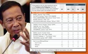 Pulse Asia Survey