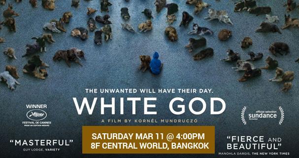 white god at tk park